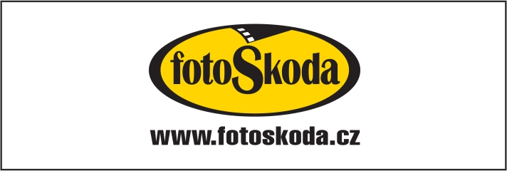 Foto Skoda na web