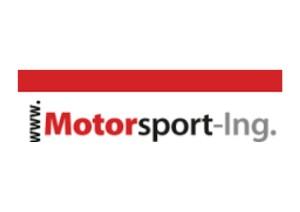 Motor sporting